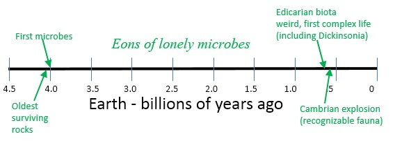 earth timeline life dickensonia.jpg