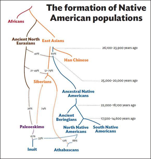 nativefamilytree1